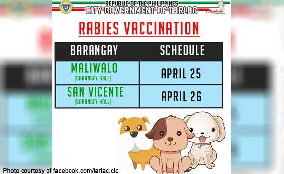 Tarlac City vet to conduct free anti-rabies vaccination in 2